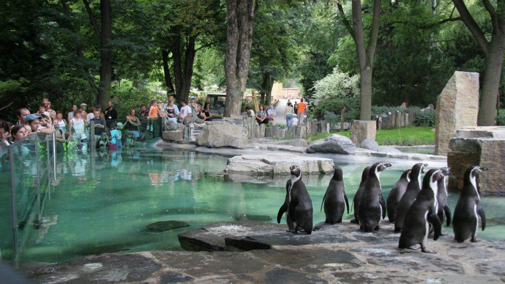 Зоопаркът в Прага