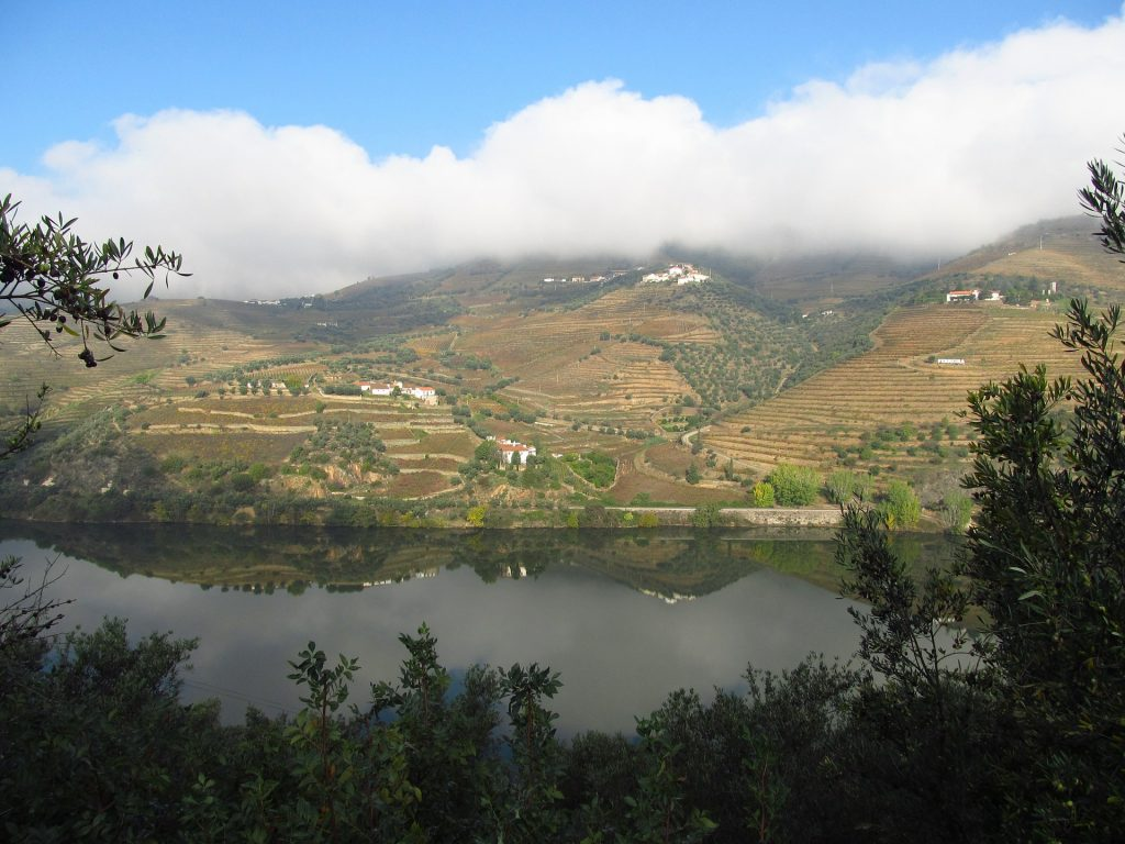 Долината на Порто / Доро, Португалия